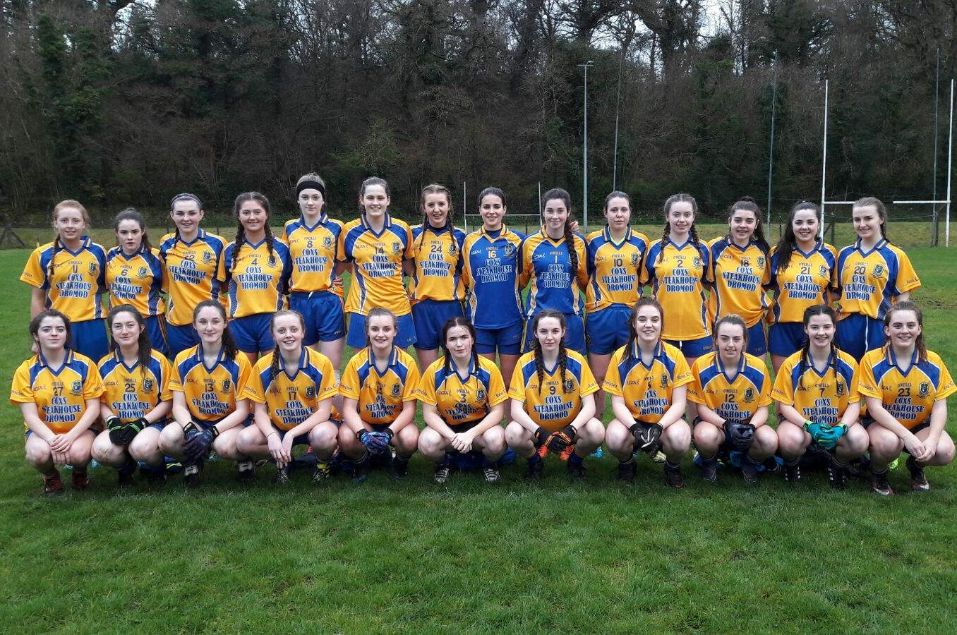 Roscommon Ladies Football