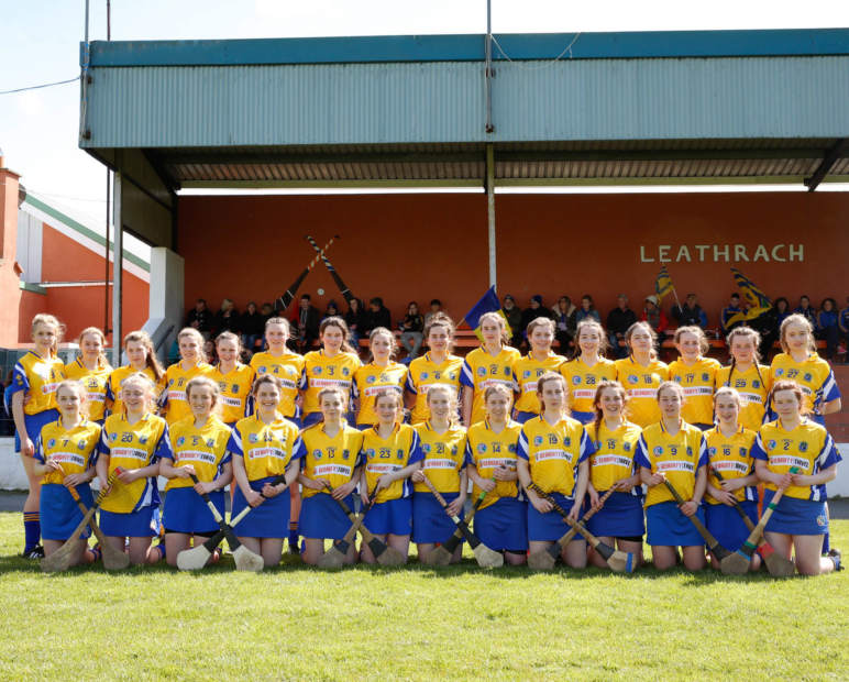 Roscommon Minor Camogie